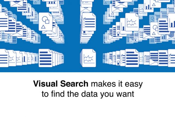 Bluespring Software Visual Search Video