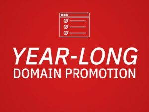 Year-long domain promotion